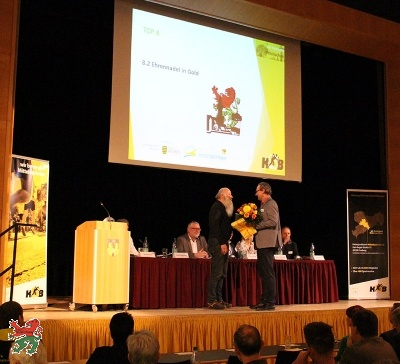 Goldene Ehrennadel des LSB Sachsen für SSV Mitglied